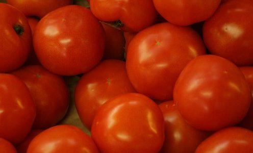 فوائد الطماطم الغذائية و الطبية