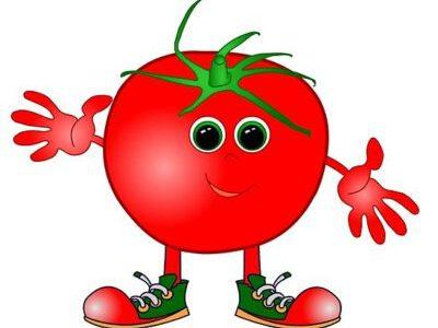 سكرابز طماطم