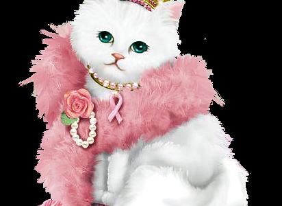 سكرابز قطط للتصميمات