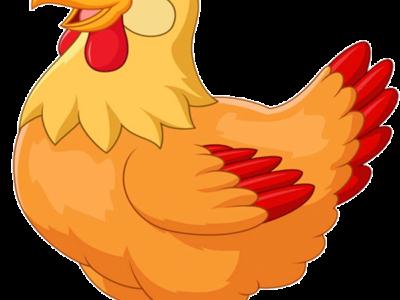 سكرابز دجاج كرتون