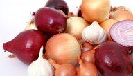 فوائد البصل الاحمر والابيض للصحة